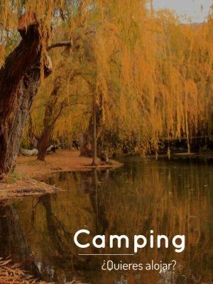 Pagina-Incio-Camping-1